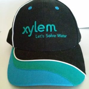 xylem-water-resistance