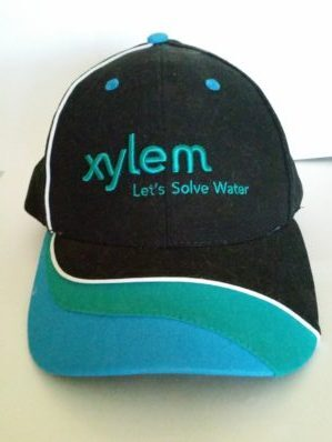 xylem water resistance